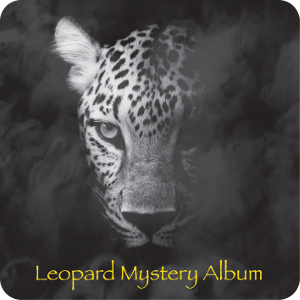 Leopard Mystery Album