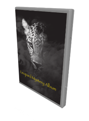 Leopard Mystery Album